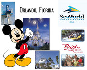 Tour America Holiday Deal for Orlando from €459pp!